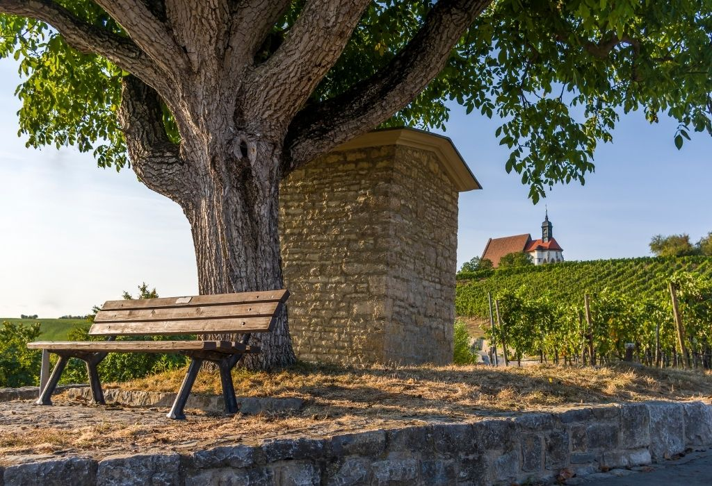 in the foreground a bench under a tree and in the background green vineyards and a small chapel (Maria im Weingarten) in Volkach am Main